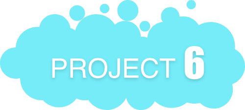 project1